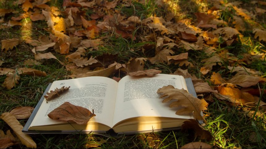 Lutter contre le réchauffement climatique par la littérature