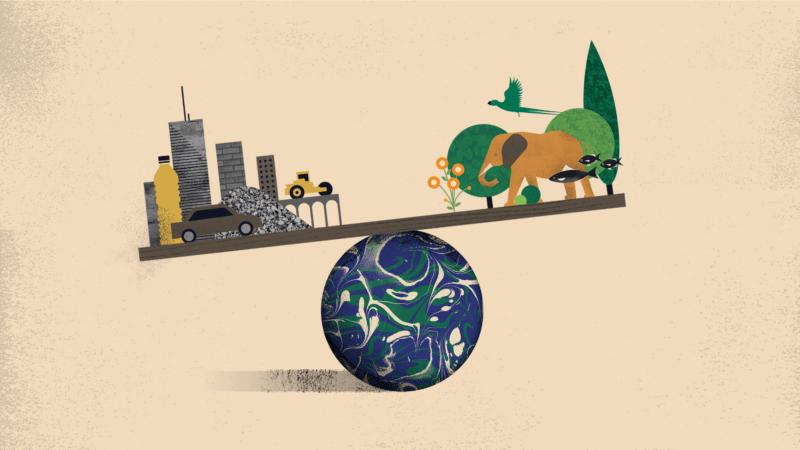 Biomasse: les objets faits par l'Homme pèsent lourd sur la planète selon une étude