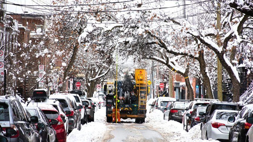 Tempête de neige: ramasser les branches cassées