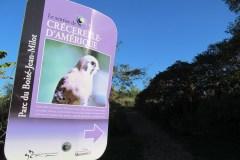 Mercier-Hochelaga-Maisonneuve met le cap sur la transition écologique