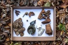 Des vestiges archéologiques trouvés au Jardin Notman