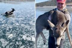 Un périlleux sauvetage en pleine glace