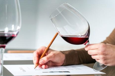 un sommelier évalue vin à la dégustation