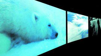 7e ciel: on craque pour «Vertigo Sea», «Soeurs: rêve et variations», «Body and Soul»...