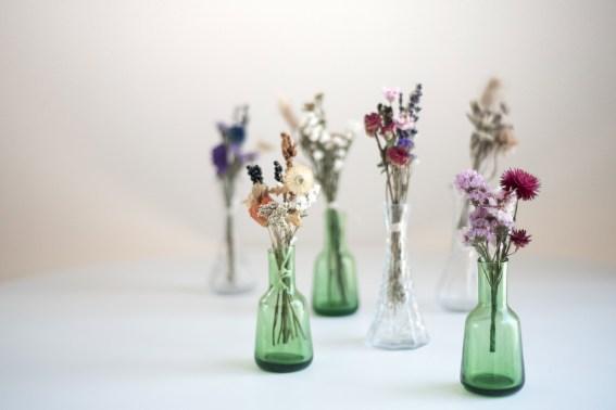 Rikikis_sec_Atelier_vegetal