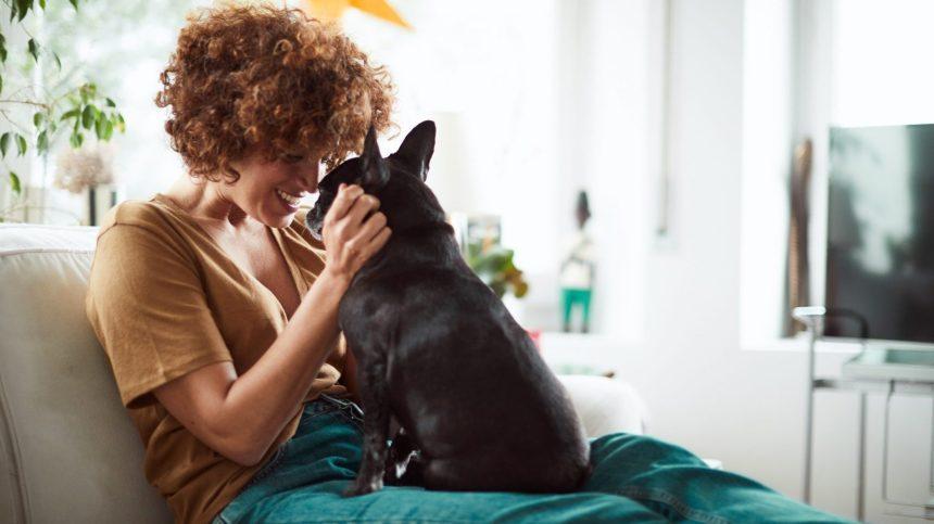 Les chiens sont les meilleurs amis de la femme, pas de l'homme