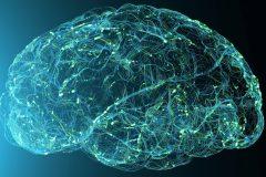 L'une des plus importantes banques de cerveaux à l'Institut Douglas
