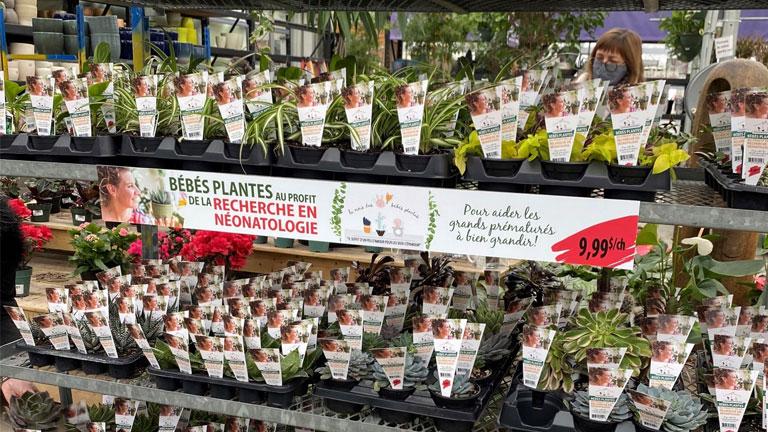 mois des bébés plantes néonatologie unité magasins participants