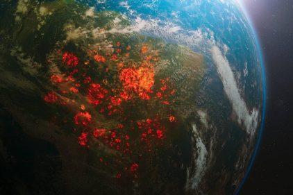 Combattre la déforestation à l'aide de l'IA