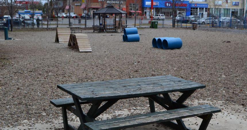 Accès gratuit au parc à chien de la rue Victoria