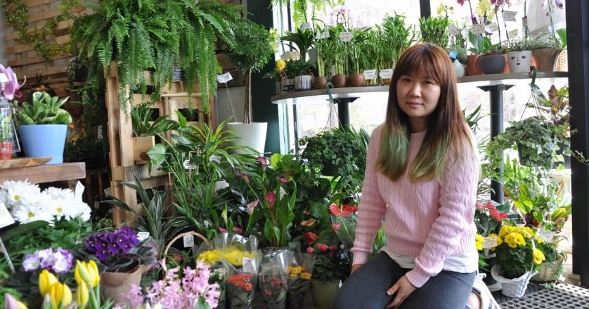 Les plantes d'intérieur ont la cote