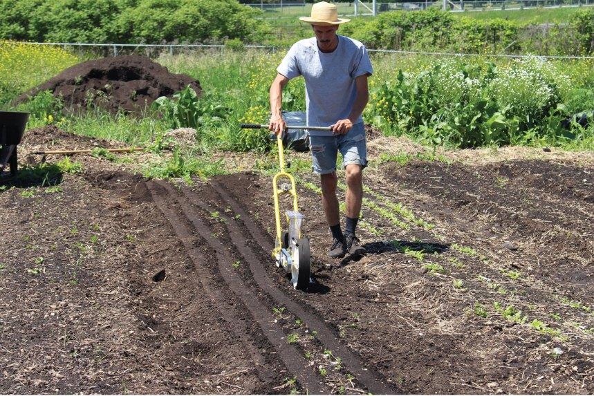 Agriculture urbaine: de grandes ambitions dans MHM