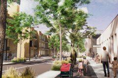 Moins d'asphalte et plus d'arbres pour l'avenue des Pins