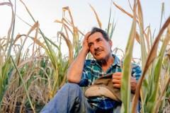 Les agriculteurs et l'intervention