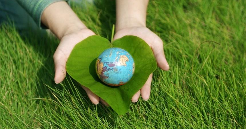 Collectif pour la carboneutralité à Lachine