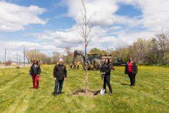Plantation des premiers arbres du plan de verdissement de RDP-PAT