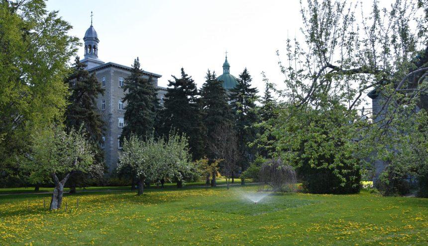 La Cité-des-Hospitalières: la Ville mise sur l'expérimentation