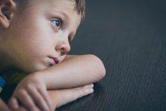 Une étude sur la transmission de la peur au sein des familles