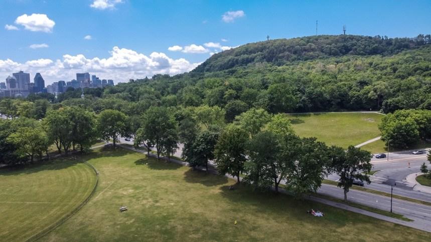Des parcs pour se détendre et s'activer sur Le Plateau