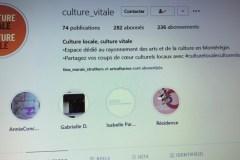Culture Montérégie: outiller les artistes