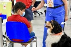 Vaccination: le CIUSSS-ODIM en milieu scolaire