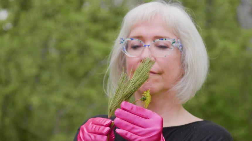 Se (re)connecter avec la nature avec l'artiste Carolline Auclair