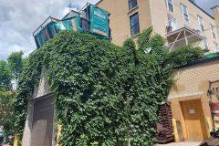 L'épicerie Valmont sur la rue Ontario poursuivie pour 15 000$