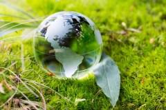 Prendre soin de l'environnement, ça commence dans son arrondissement
