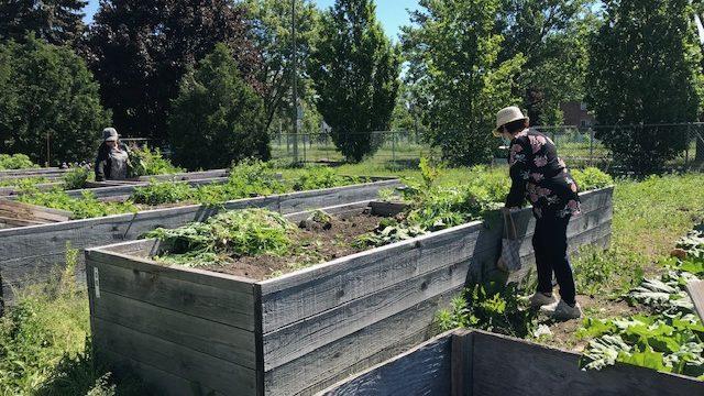 Le site du jardin Souligny sera interdit d'accès aux citoyens