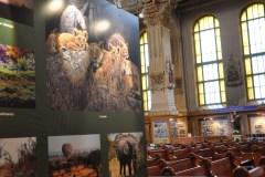 Photos uniques à l'église Notre-Dame-des-Sept-Douleurs