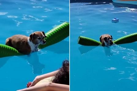Pas besoin de savoir nager pour pouvoir profiter