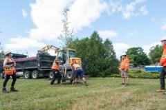 Plus de 10 000 arbres plantés depuis 2008