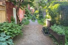 Les ruelles vertes du Plateau: un atout pour le voisinage