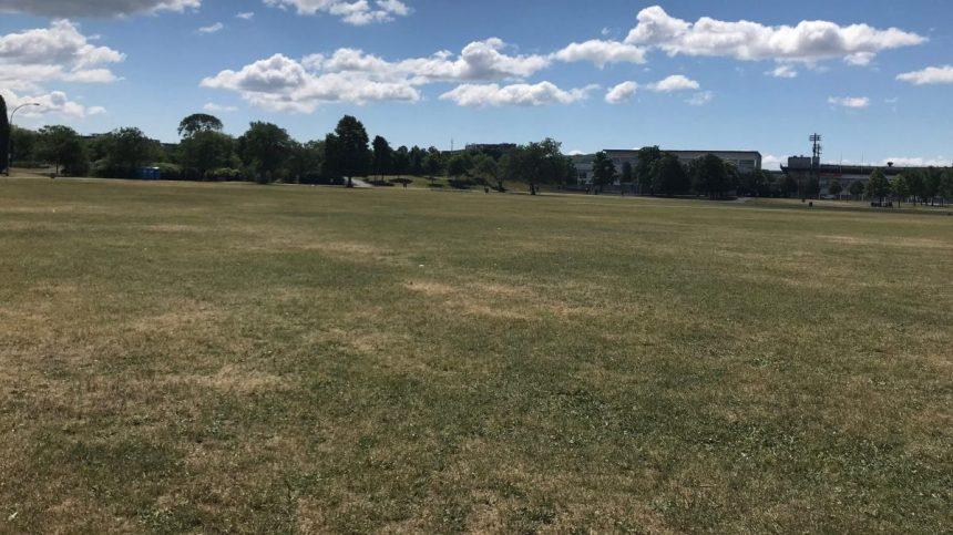 Des parcs à visiter dans Villeray
