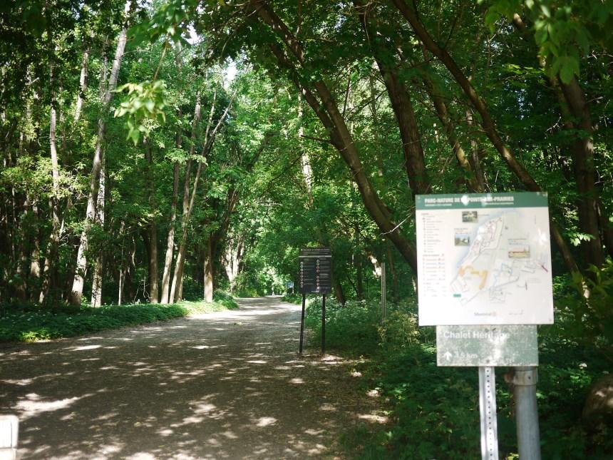 Espaces verts: la nature en ville à la Pointe-de-l'île