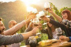 Des vins pour vos vacances estivales !