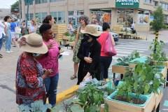 L'agriculture urbaine pour renforcer le lien entre les communautés
