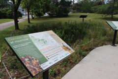 Plusieurs aménagements pour la biodiversité à Saint-Léonard