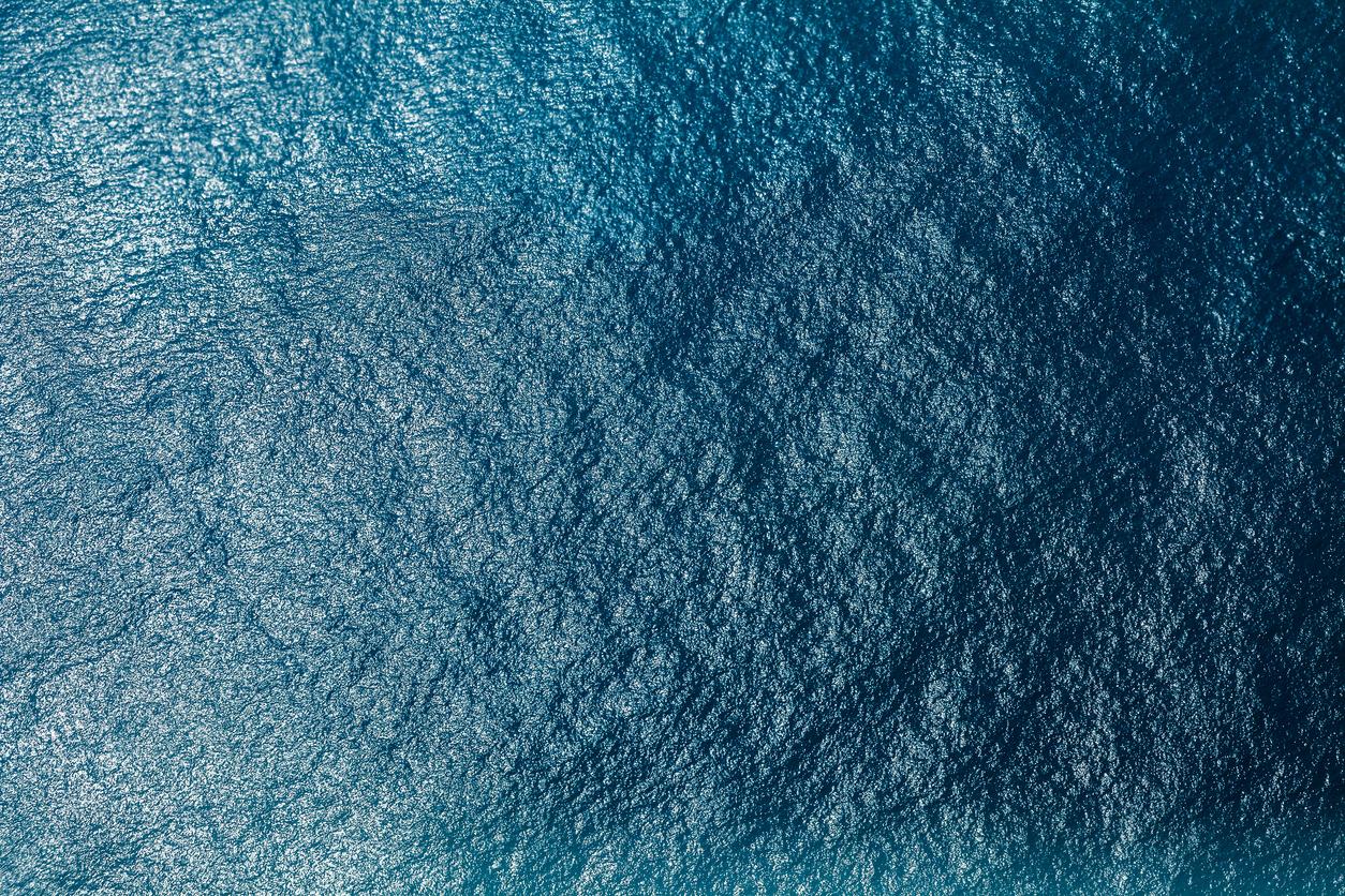 L'oxyde nitreux, un puissant gaz à effet de serre, est en augmentation dans les zones mortes des océans
